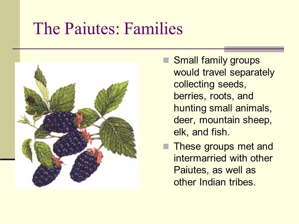 The Paiutes: Families