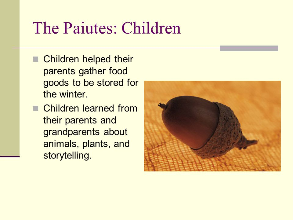 The Paiutes: Children Children helped their parents gather food goods to be stored for the winter.