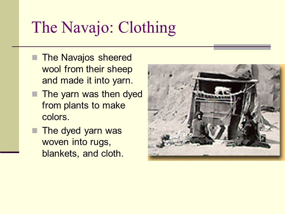 The Navajo: Clothing The Navajos sheered wool from their sheep and made it into yarn. The yarn was then dyed from plants to make colors.