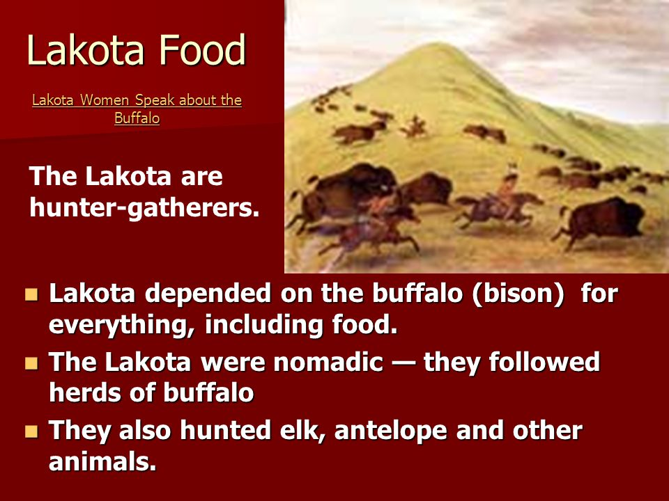 Lakota Food Lakota Women Speak about the Buffalo