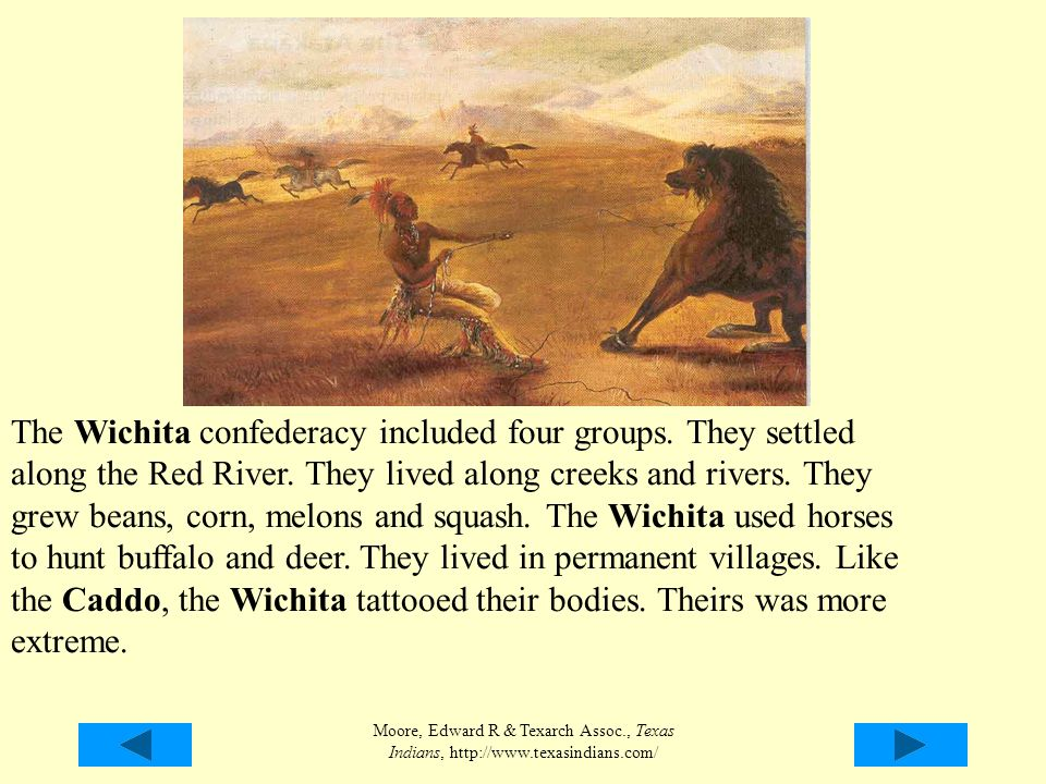 The Wichita confederacy included four groups