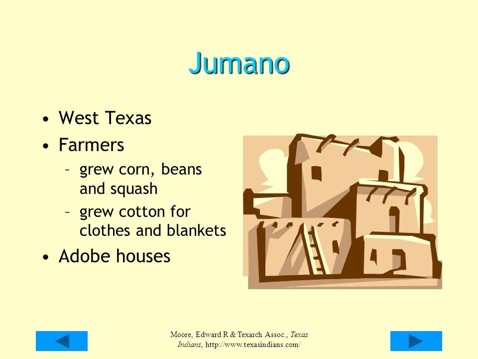 Jumano West Texas Farmers Adobe houses grew corn, beans and squash