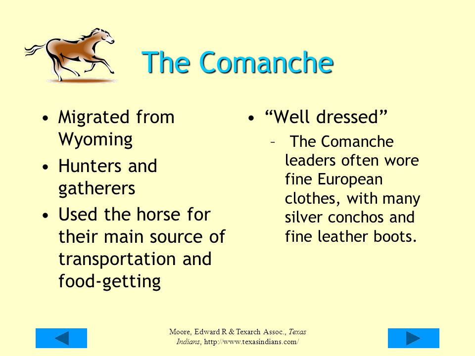 The Comanche Migrated from Wyoming Hunters and gatherers