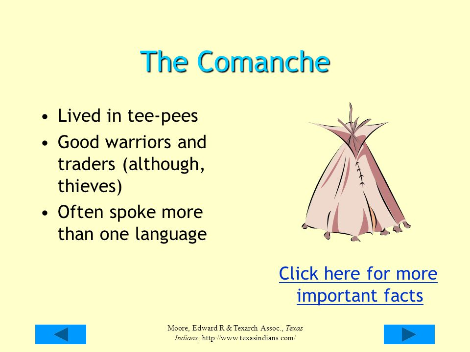 The Comanche Lived in tee-pees