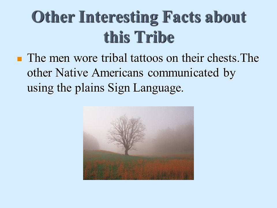 Other Interesting Facts about this Tribe