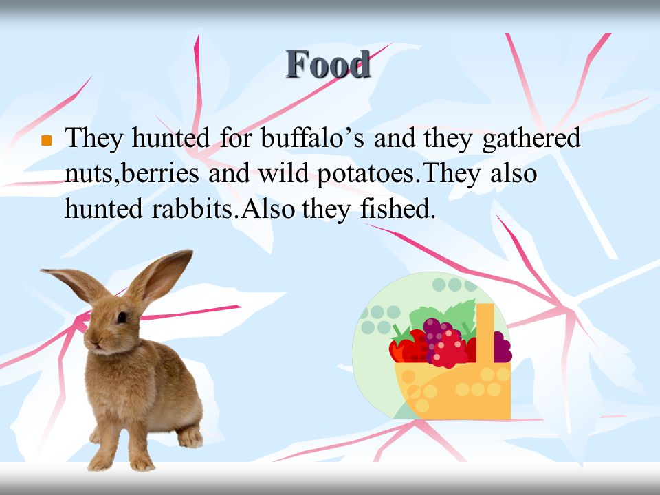 Food They hunted for buffalo's and they gathered nuts,berries and wild potatoes.They also hunted rabbits.Also they fished.
