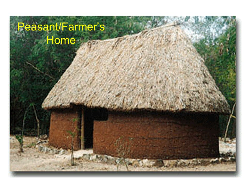 Peasant/Farmer's Home