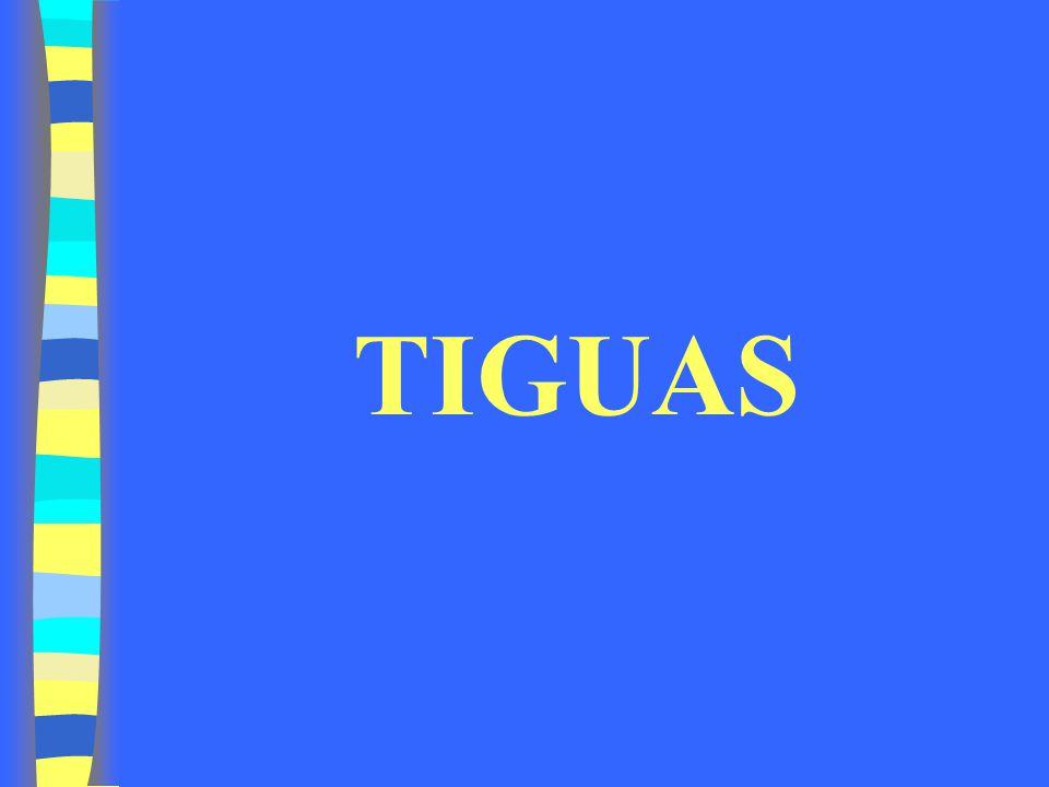 TIGUAS
