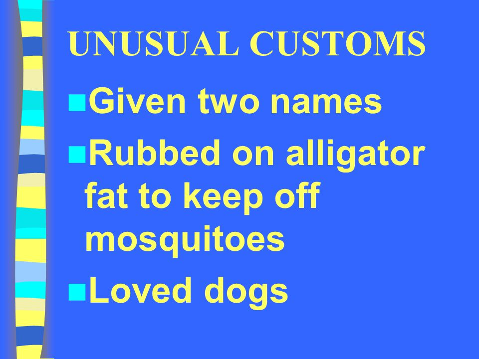 UNUSUAL CUSTOMS Given two names Rubbed on alligator fat to keep off mosquitoes Loved dogs