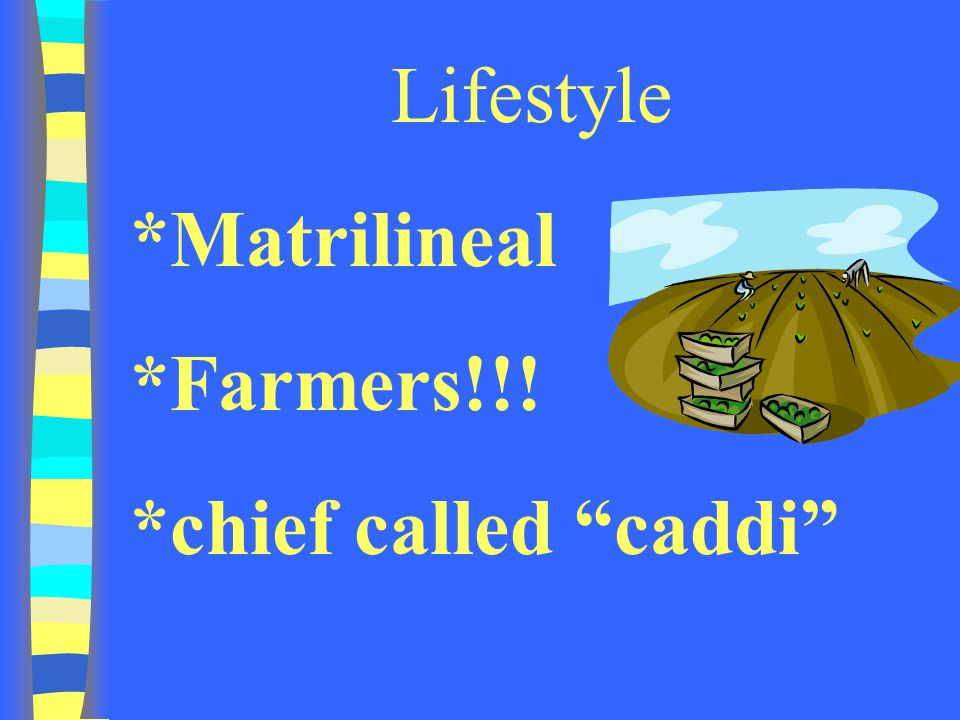 Lifestyle *Matrilineal *Farmers!!! *chief called caddi