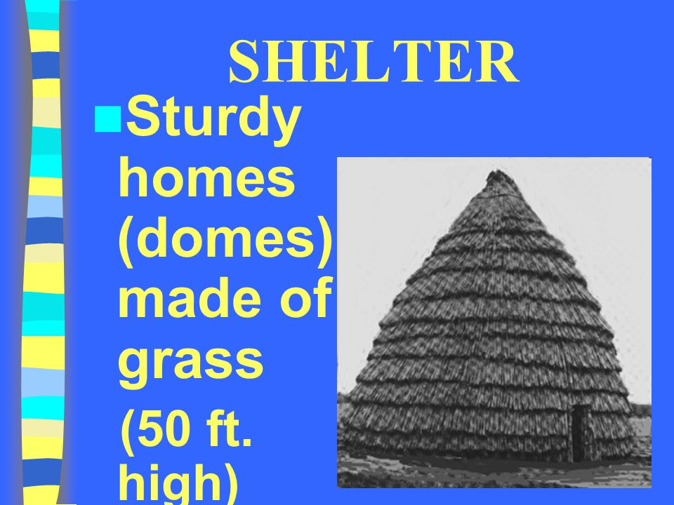 SHELTER Sturdy homes (domes) made of grass (50 ft. high)
