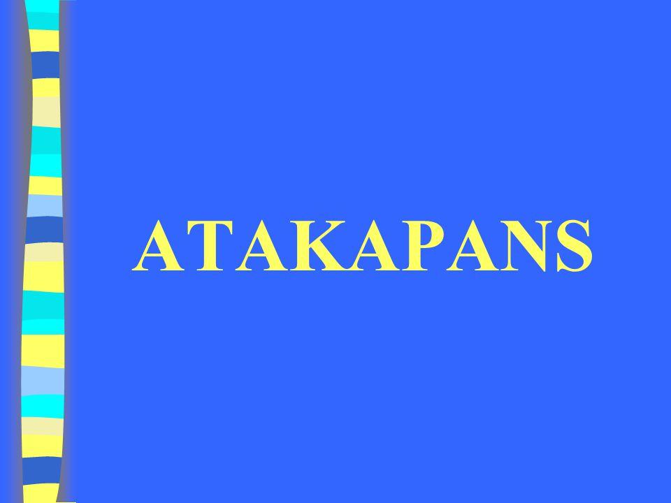 ATAKAPANS