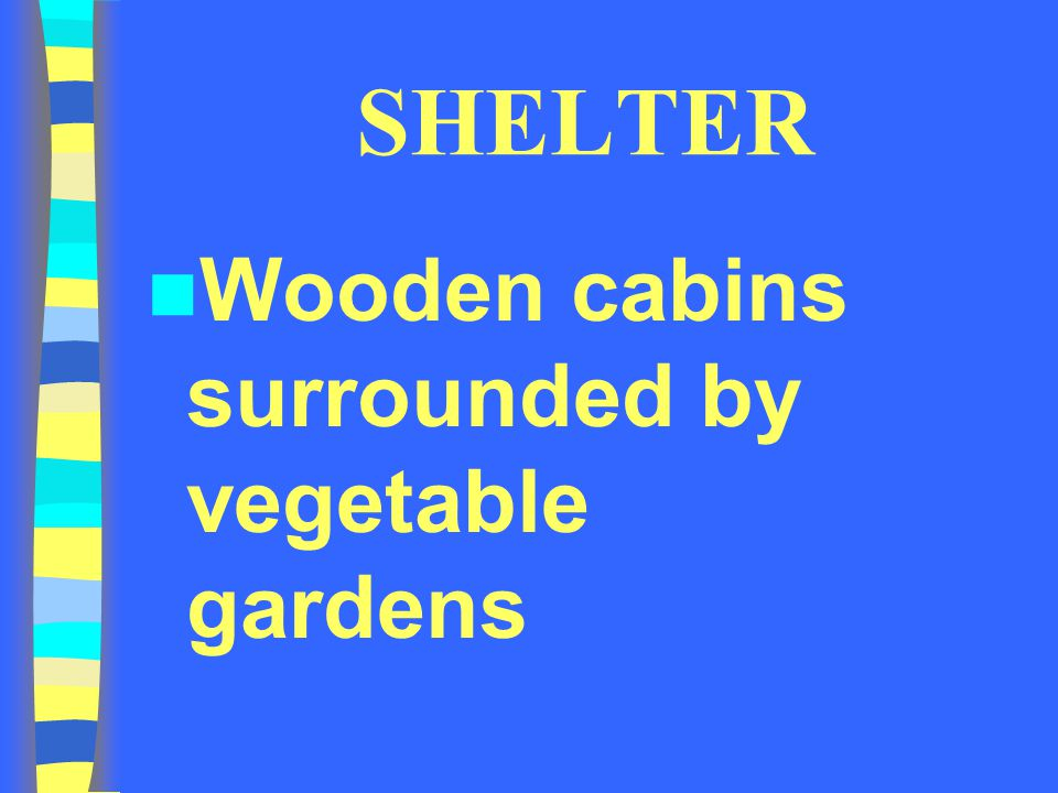 SHELTER Wooden cabins surrounded by vegetable gardens