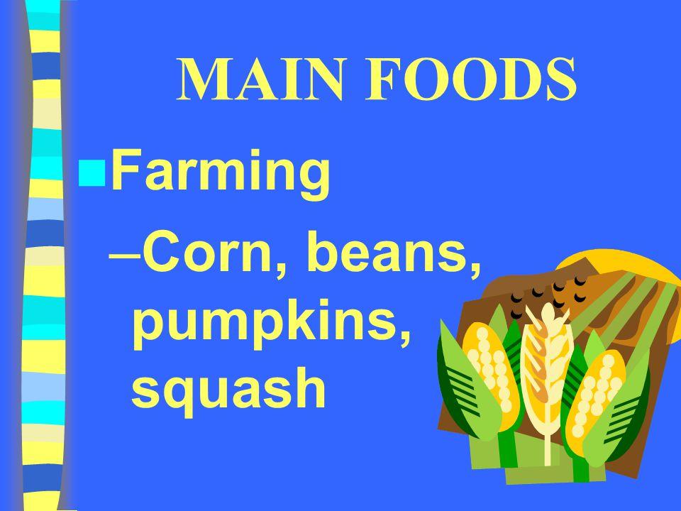 MAIN FOODS Farming Corn, beans, pumpkins, squash