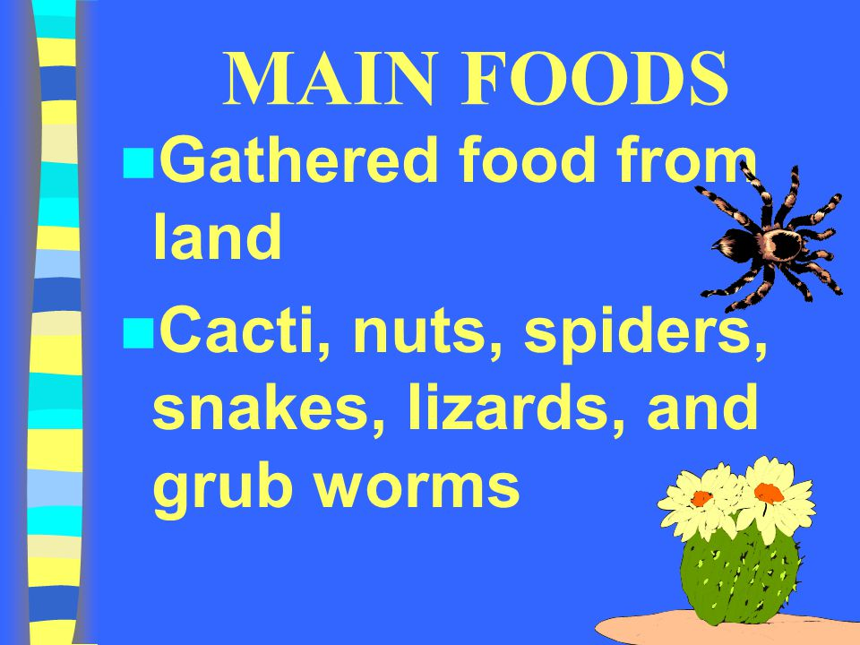 MAIN FOODS Gathered food from land