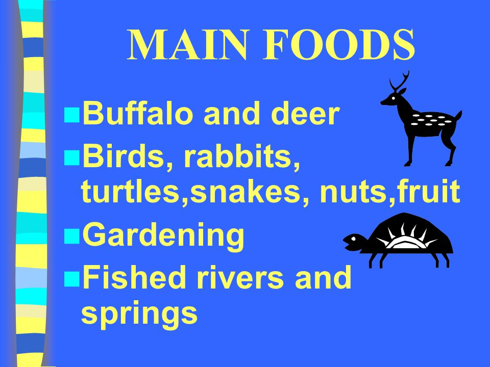 MAIN FOODS Buffalo and deer Birds, rabbits, turtles,snakes, nuts,fruit