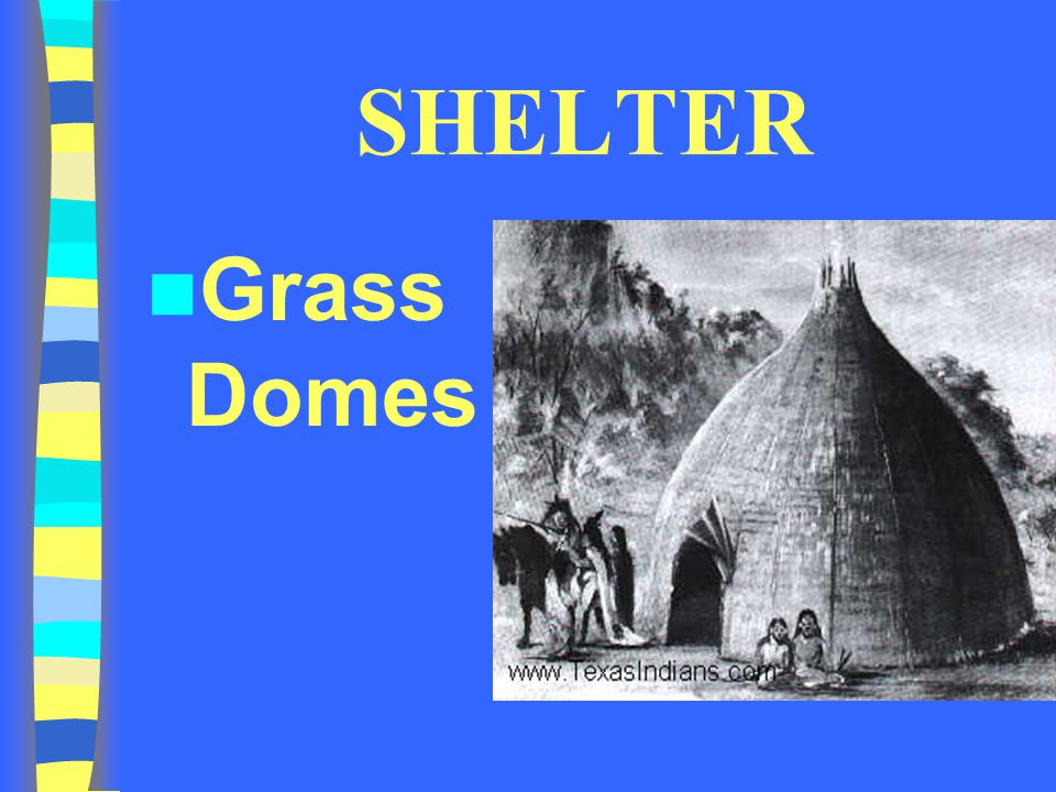 SHELTER Grass Domes