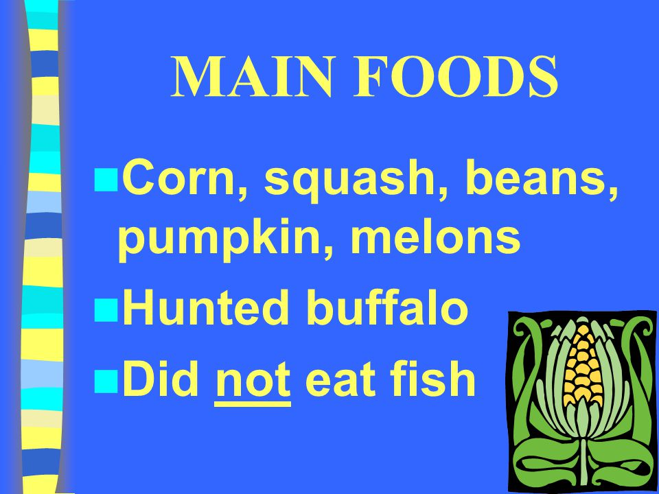MAIN FOODS Corn, squash, beans, pumpkin, melons Hunted buffalo