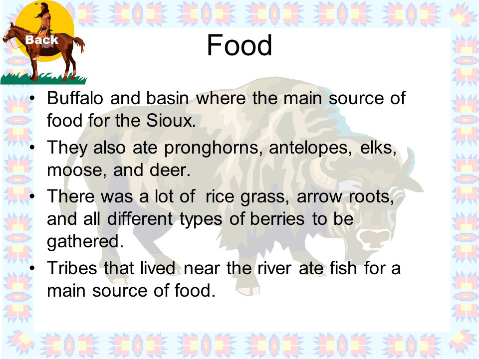 Food Buffalo and basin where the main source of food for the Sioux.