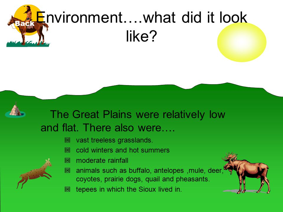 Environment….what did it look like