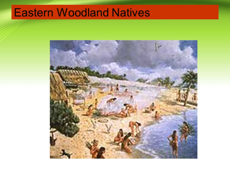 Eastern Woodland Natives