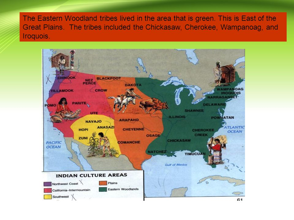 The Eastern Woodland tribes lived in the area that is green