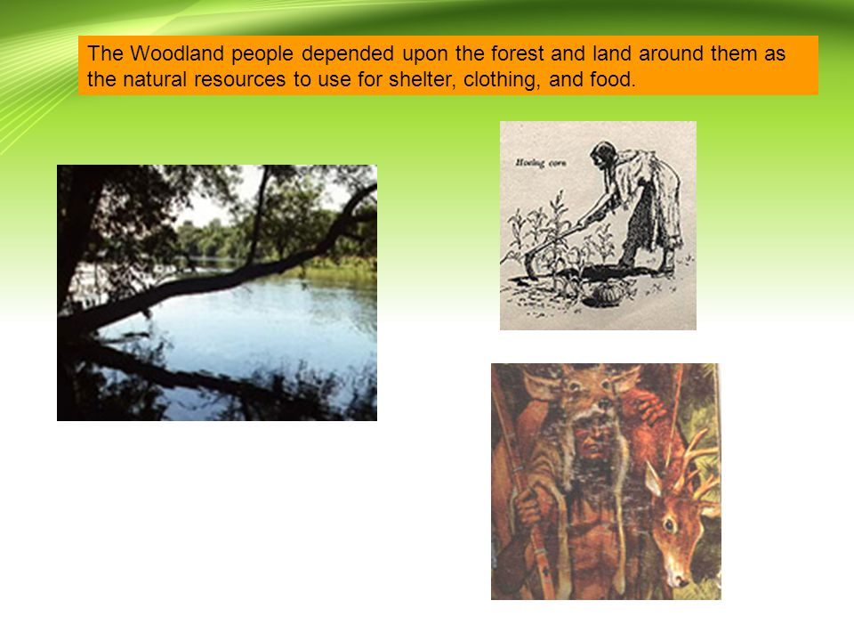 The Woodland people depended upon the forest and land around them as the natural resources to use for shelter, clothing, and food.