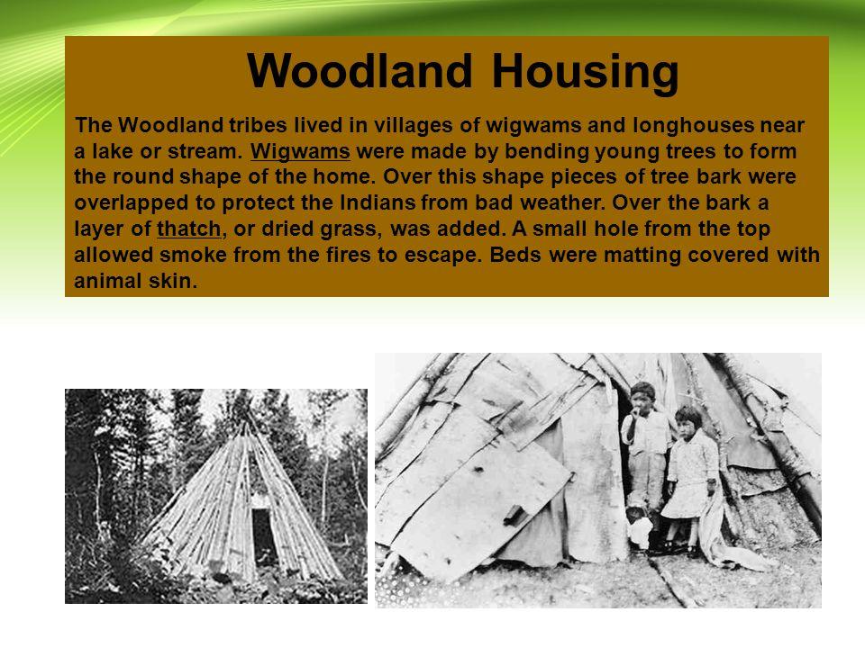 Woodland Housing