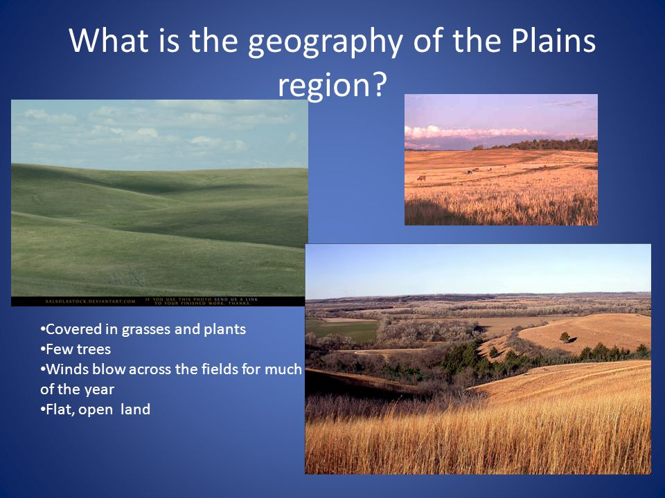 What is the geography of the Plains region