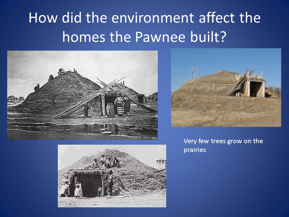 How did the environment affect the homes the Pawnee built