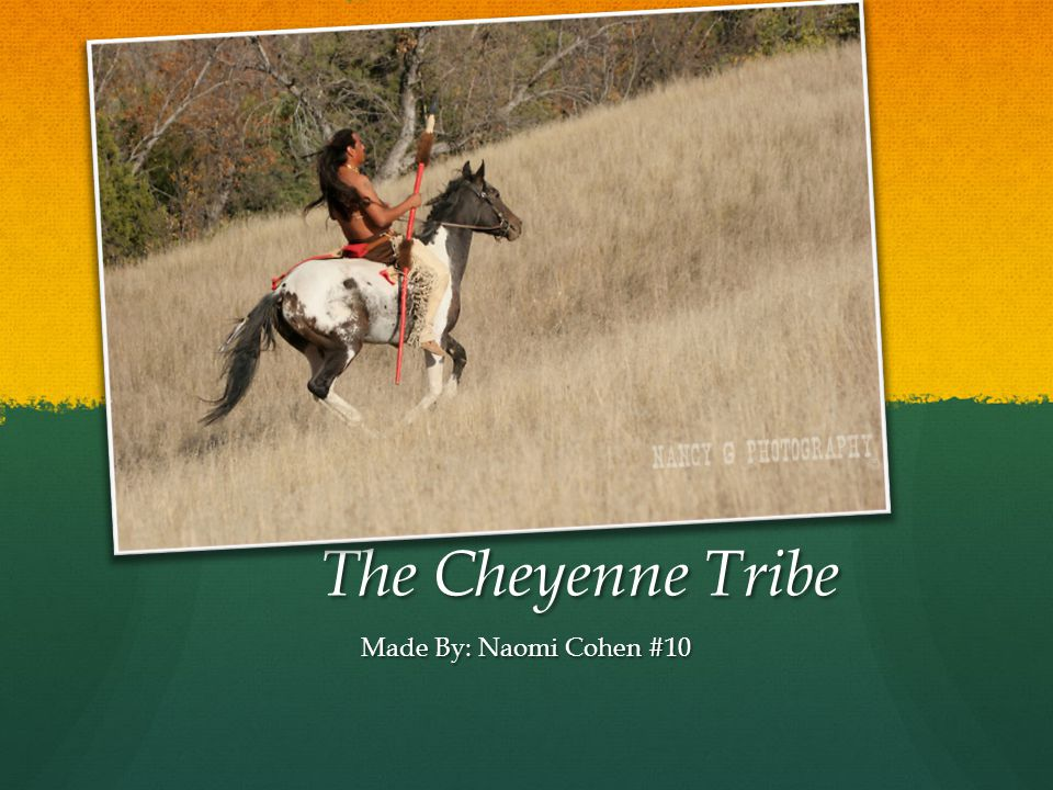 The Cheyenne Tribe Made By: Naomi Cohen #10