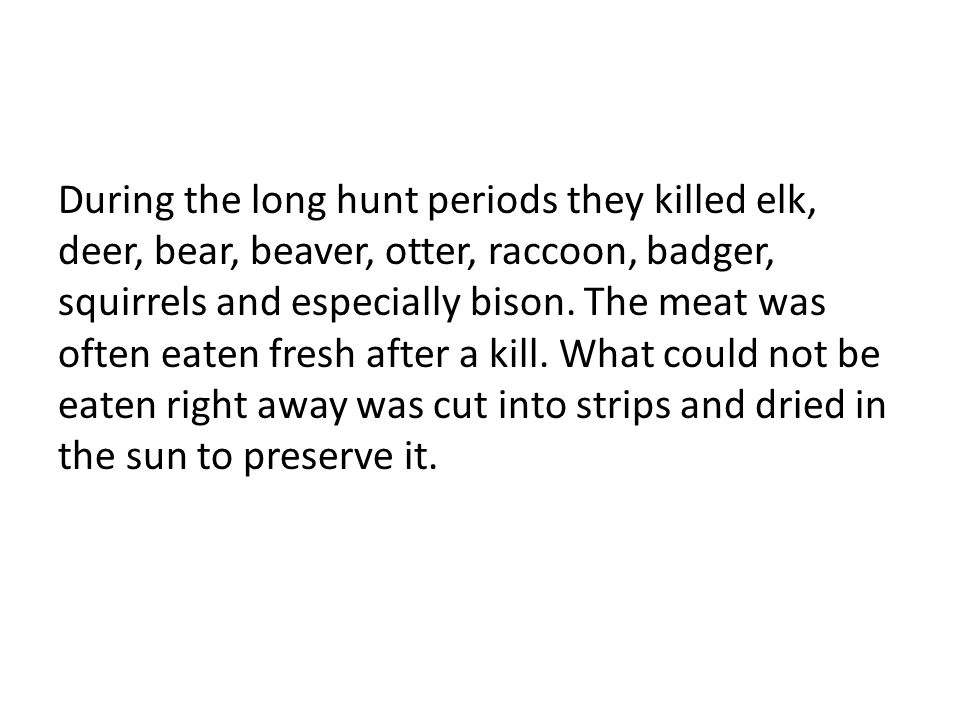 During the long hunt periods they killed elk, deer, bear, beaver, otter, raccoon, badger, squirrels and especially bison.