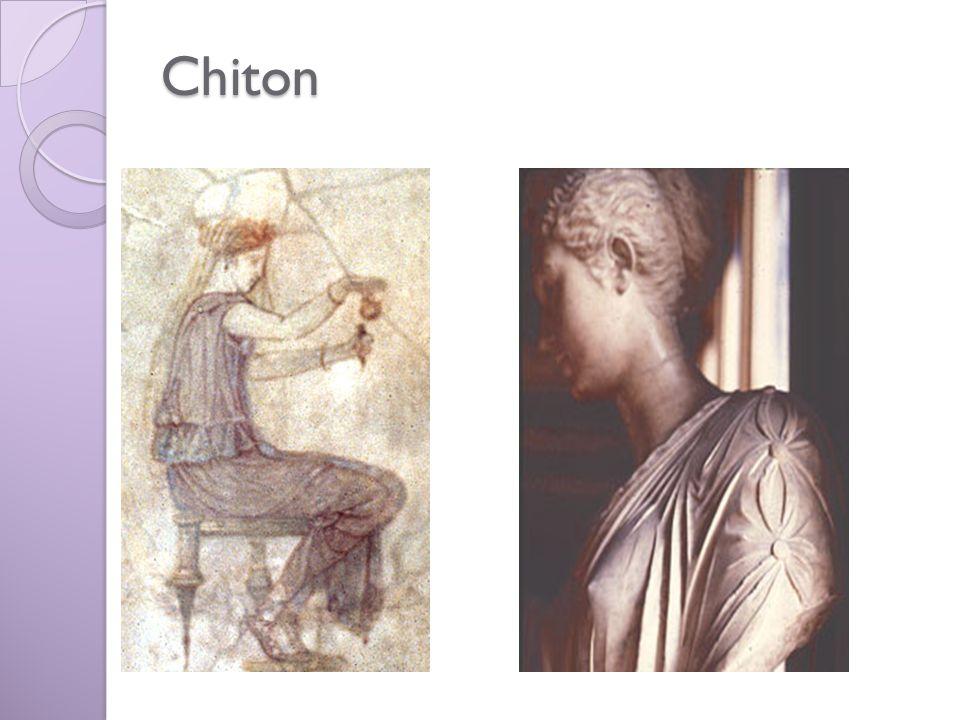 Chiton