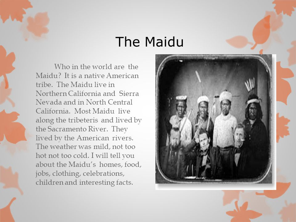 native american tribes facts