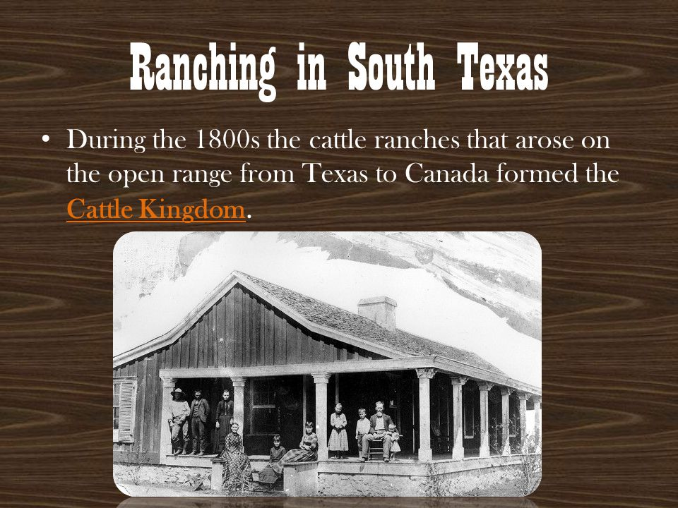 Ranching in South Texas