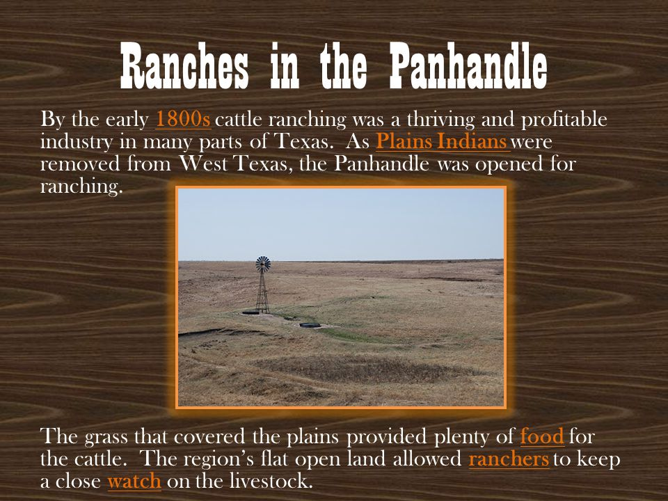 Ranches in the Panhandle