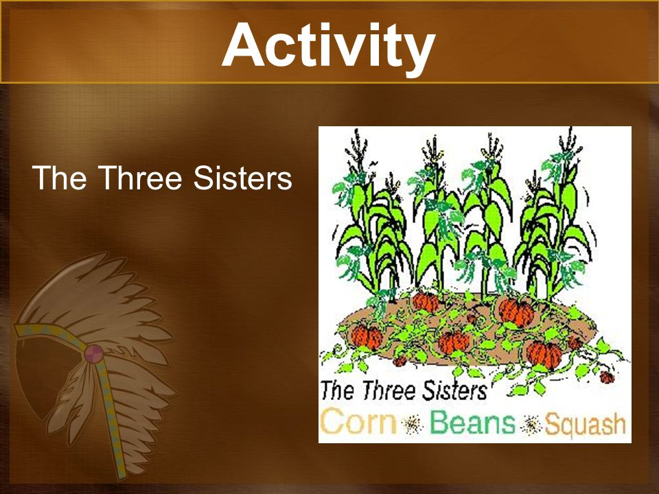 Activity The Three Sisters