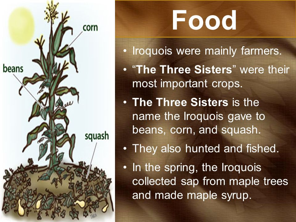 Food Iroquois were mainly farmers.