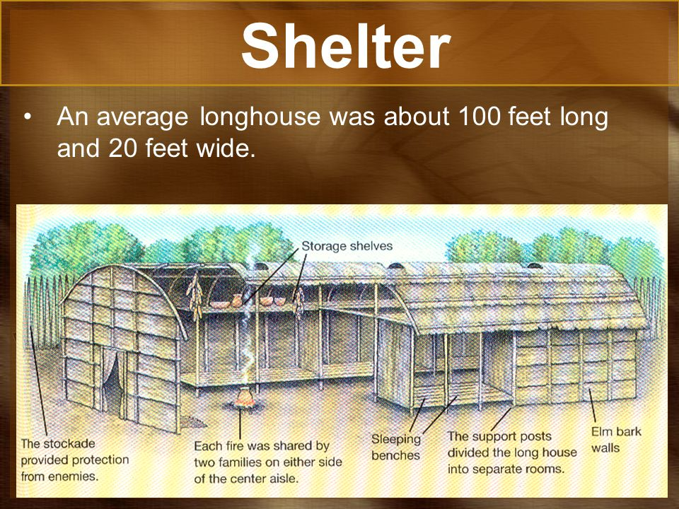 Shelter An average longhouse was about 100 feet long and 20 feet wide.