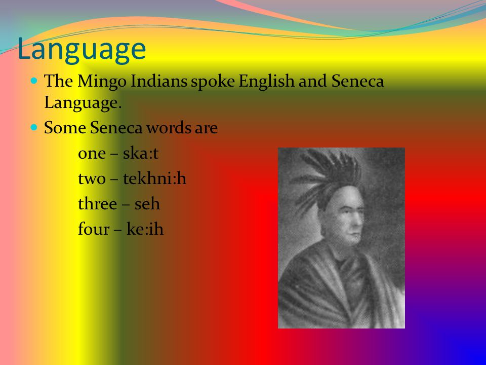 Language The Mingo Indians spoke English and Seneca Language.