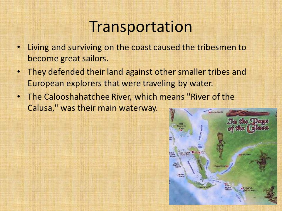 Transportation Living and surviving on the coast caused the tribesmen to become great sailors.
