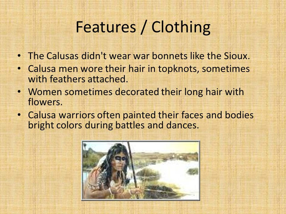 Features / Clothing The Calusas didn t wear war bonnets like the Sioux. Calusa men wore their hair in topknots, sometimes with feathers attached.