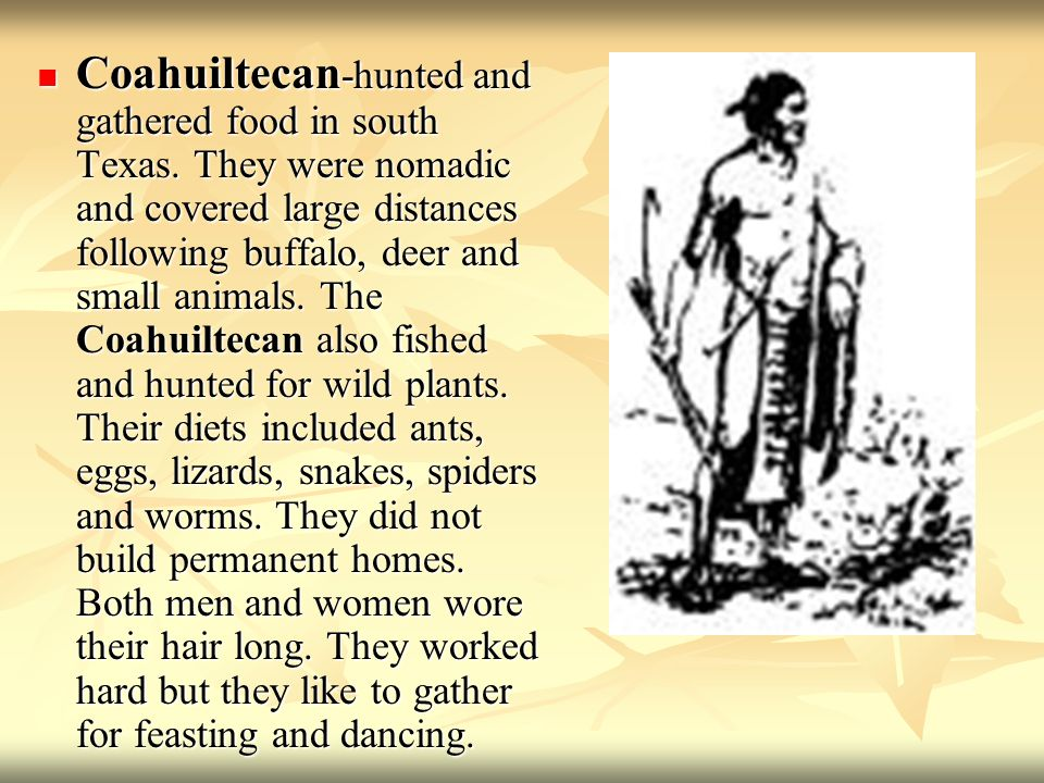 Coahuiltecan-hunted and gathered food in south Texas
