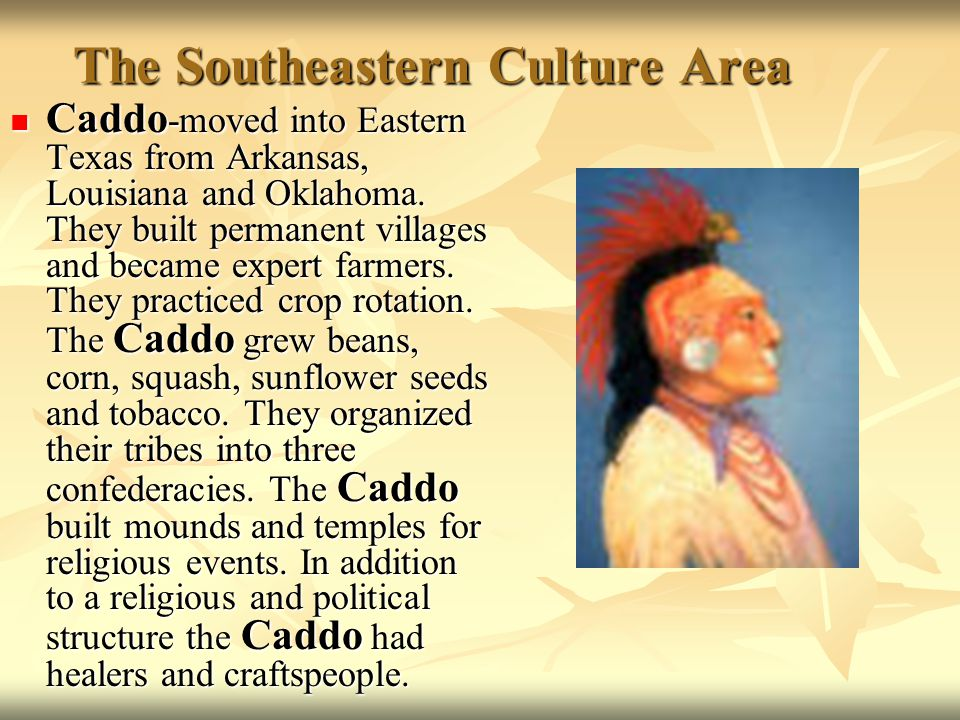 The Southeastern Culture Area