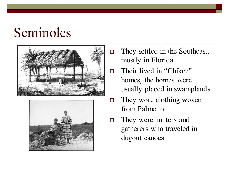 Seminoles They settled in the Southeast, mostly in Florida