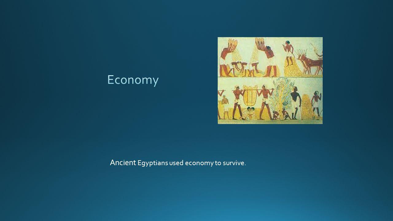Economy Ancient Egyptians used economy to survive.