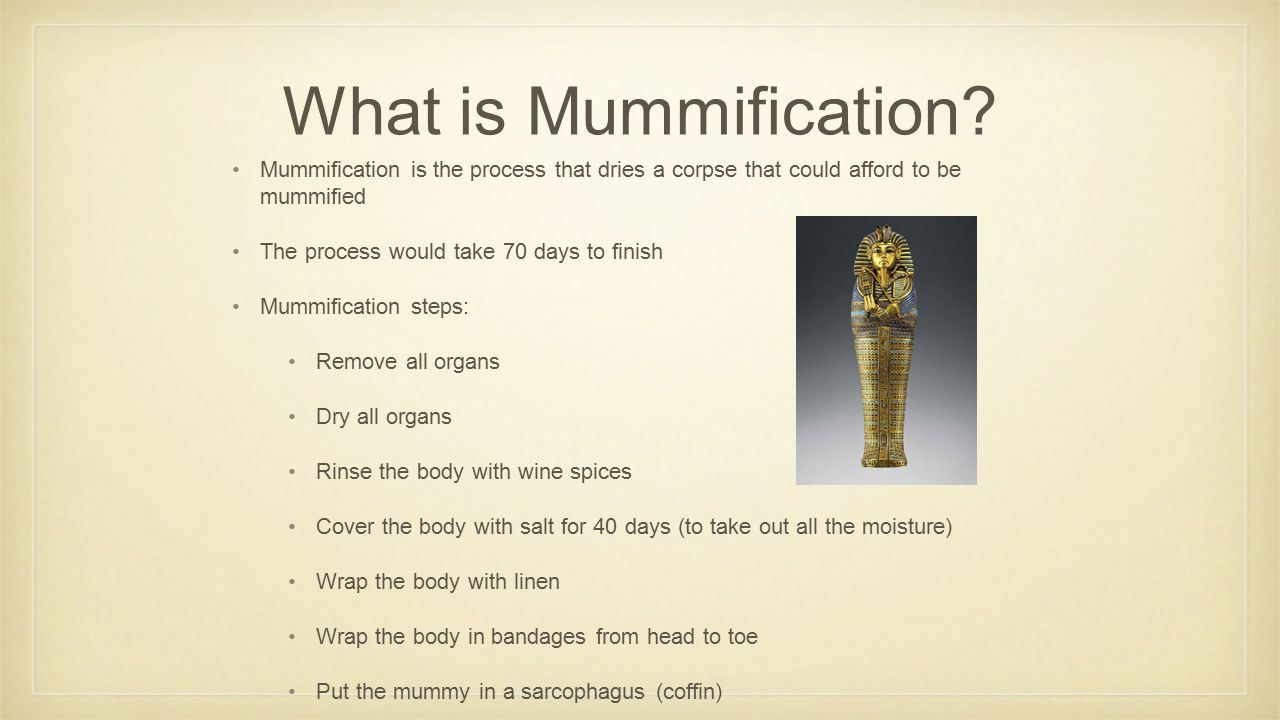 What is Mummification Mummification is the process that dries a corpse that could afford to be mummified.