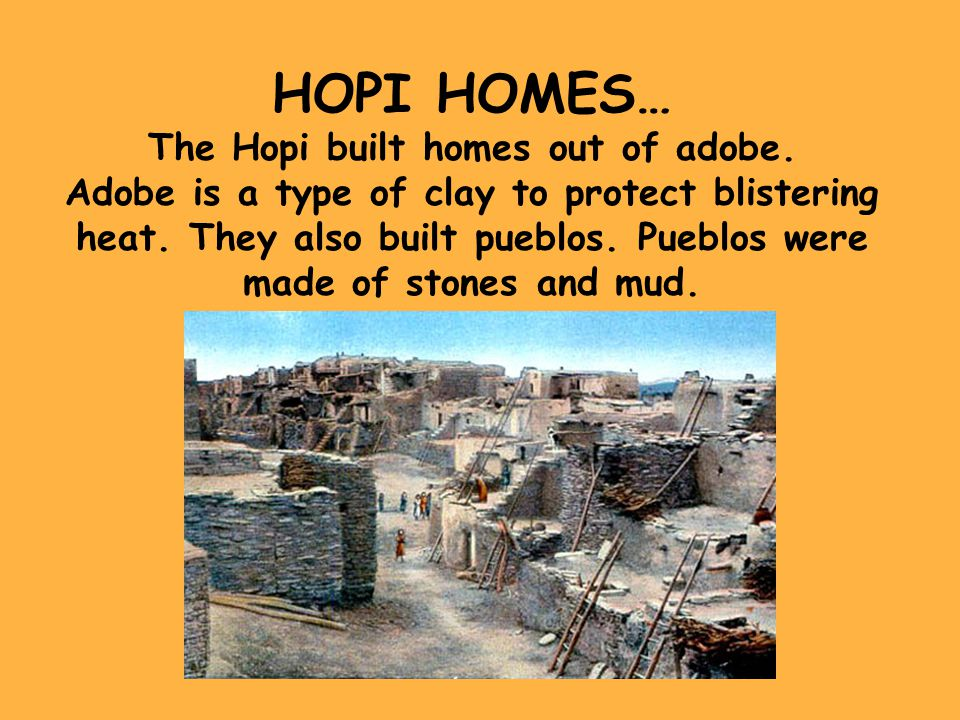 The Hopi built homes out of adobe.