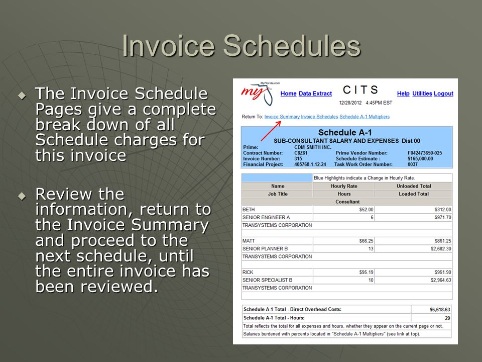 Invoice Schedules The Invoice Schedule Pages give a complete break down of all Schedule charges for this invoice.