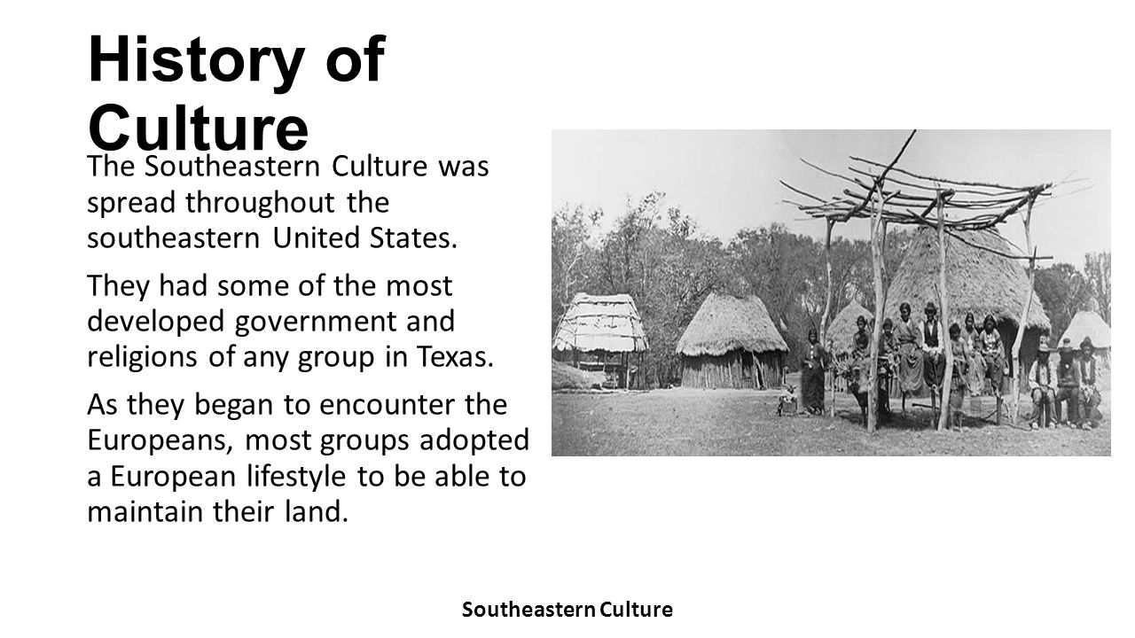 History of Culture